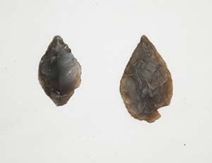 Flint arrowheads used for hunting in Bedford River Valley Park during the Neolithic.