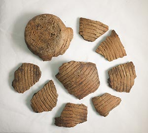 Fragments of a beaker decorated by pressing the teeth of a comb into the damp clay before it was fired. It was found close to the mortuary enclosures and dates from between the late Neolithic and early Bronze Age.
