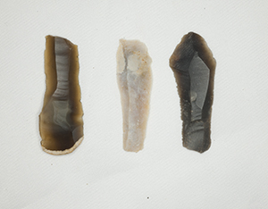 The people who lived here after the last Ice Age ended, used these flint blades as multi-purpose tools. (Image Bill Bevan)