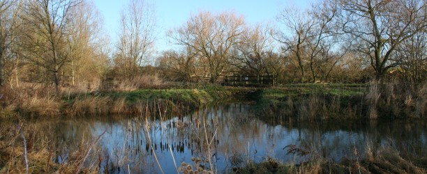 Bailey Bridge Pond nr E. Brook17.01.11a