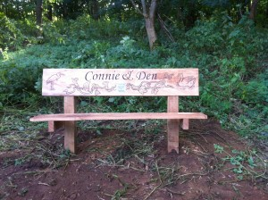 The bench between Danish Camp  Elstow Brook